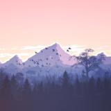 mountains-1412683_1280